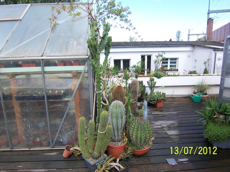 Good morning everybody, I´am a new member - a cacti lover!!! Bild1270