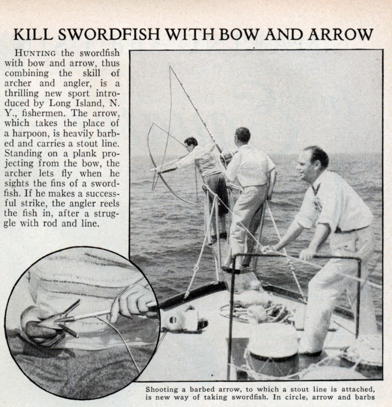 NEWS FROM THE PAST Swordf10