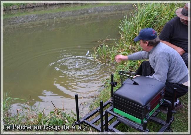 Une pêche très difficile 6910