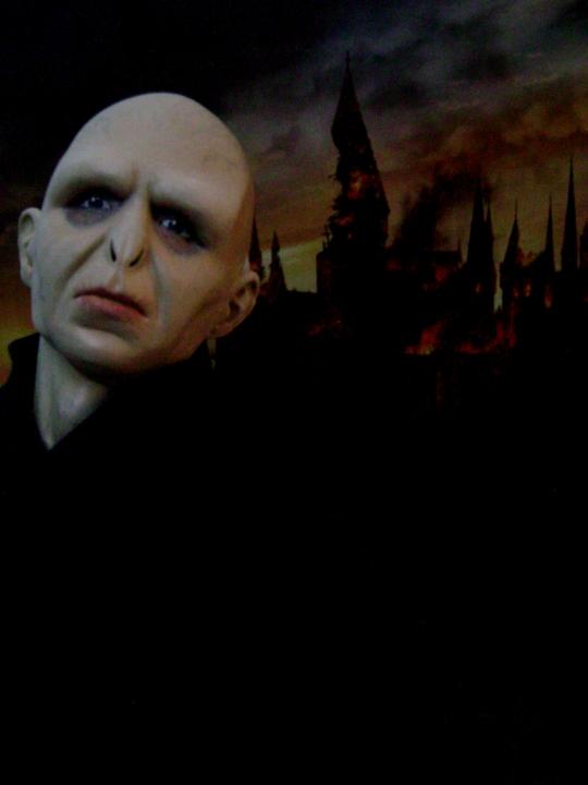 Sculpture de Diablo : Voldemort HP7 part2 1/4 scale Voldem14