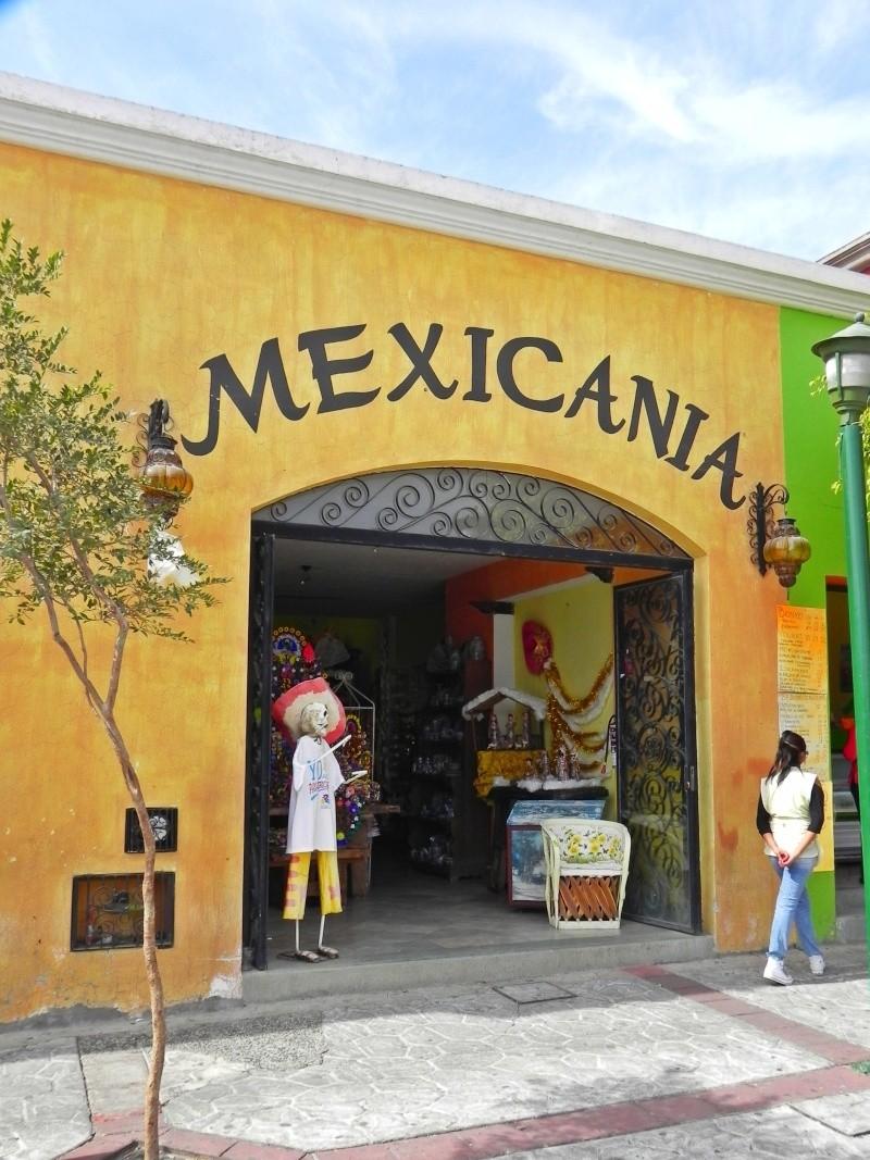 Where to buy Milogros in the Chapala or Guadalajara area? Dscn2711