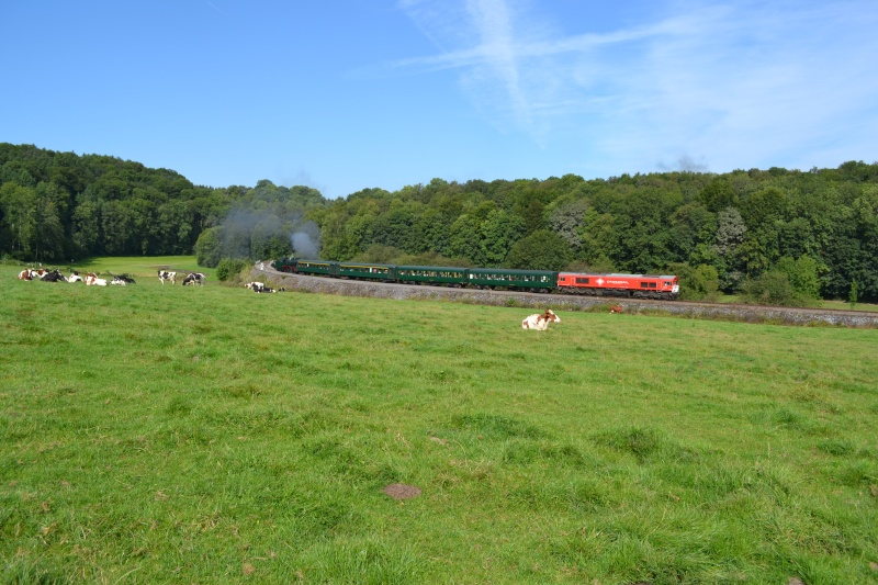 [ PFT ] - Festival vapeur du CFB ( Chemin de Fer du Bocq ) Dsc_0215