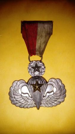 Médaille para US...  Dsc_1431