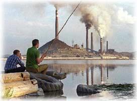 Viven contaminando!! Atorta12