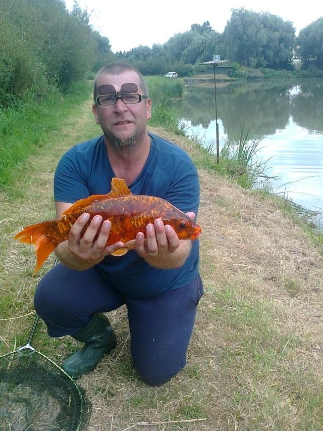 mon étang a hames boucres  Photo036
