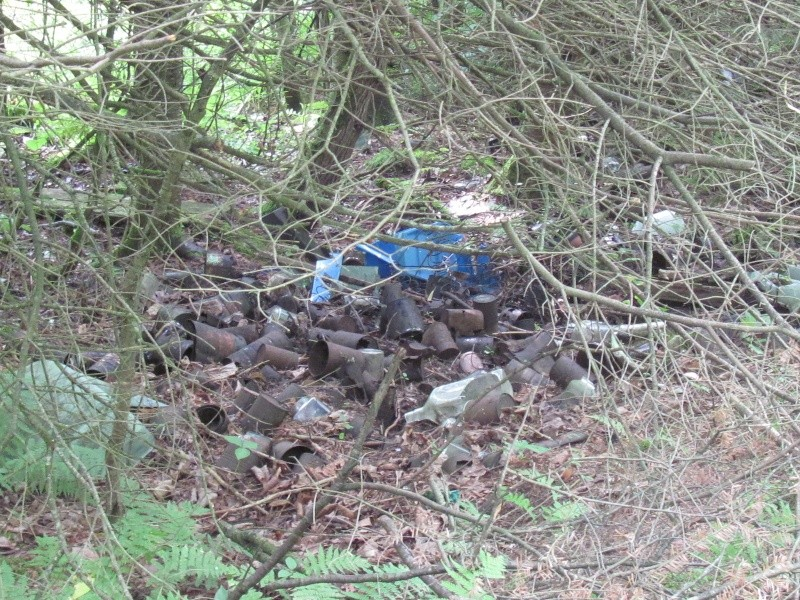 Avant midi de creuse à la Dompe du Vieux Chemin 01011