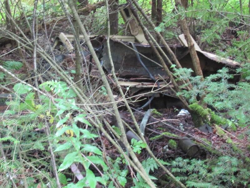Avant midi de creuse à la Dompe du Vieux Chemin 01110