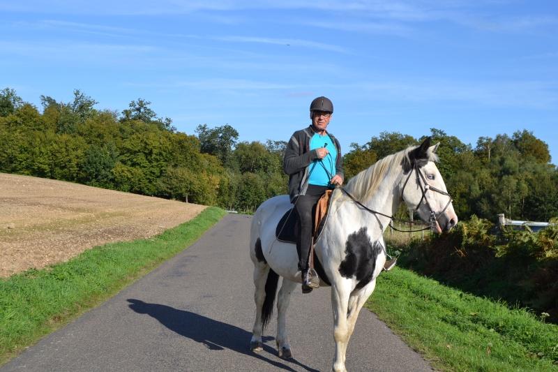 Nos deux autres chevaux Dsc_0512