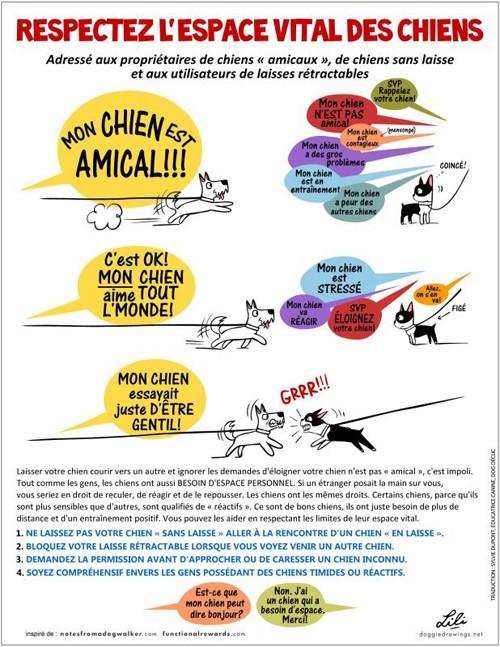 Le ruban jaune pour les chiens qui ont besoin d'espace - Page 3 Espace10