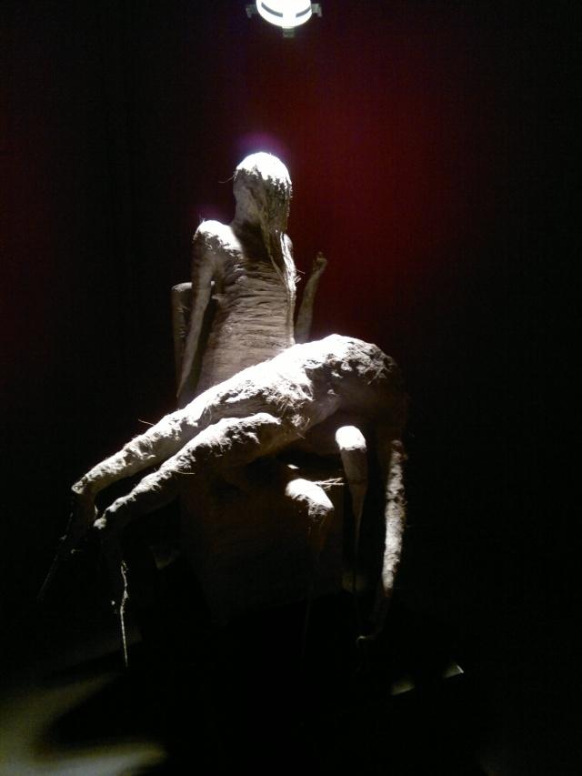 """l'exposition """"l'humanité"""" à Lausanne 27072032"""