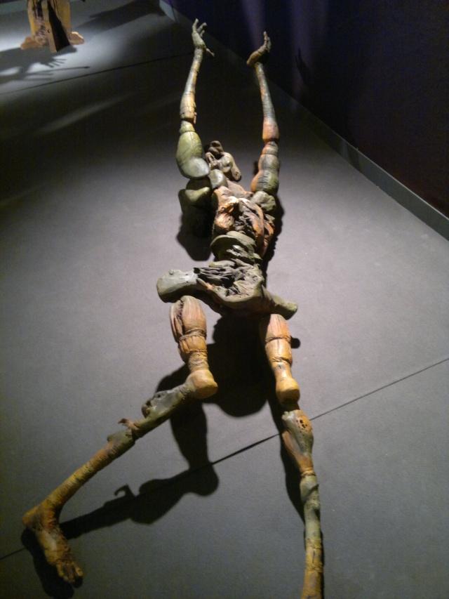 """l'exposition """"l'humanité"""" à Lausanne 27072036"""