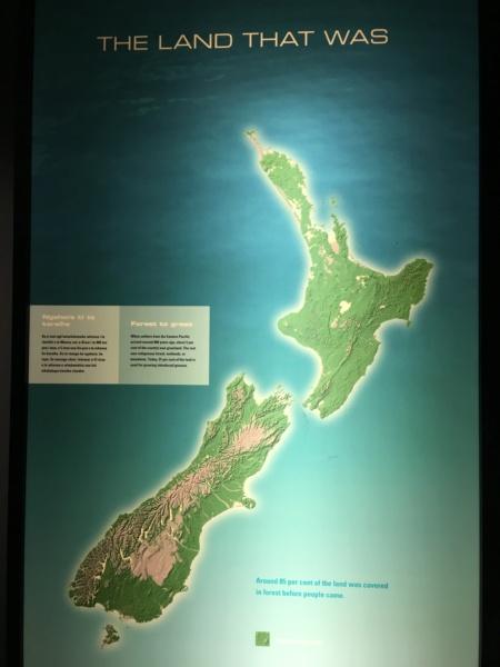 Nouvelle Zélande - Page 2 Img_3910