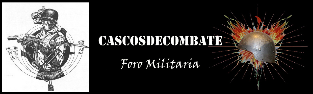 www.cascosdecombate.es