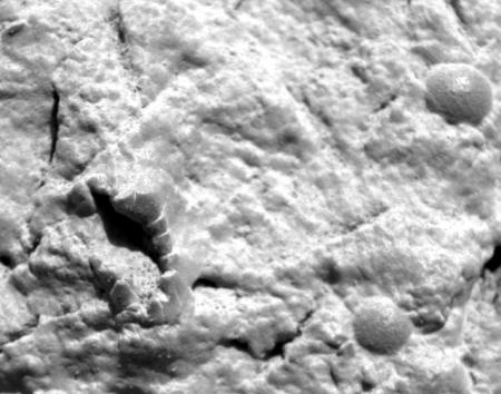 Ciudades en Marte?? 1m131210