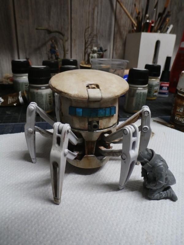Robot - Hexbug P3150012
