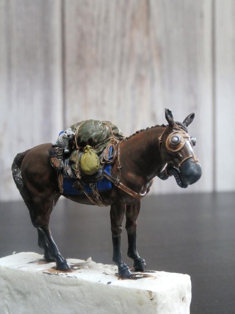 Survivant avec son cheval - figurine Kellerkind Miniaturen - 1/35 (FINI) P7140015