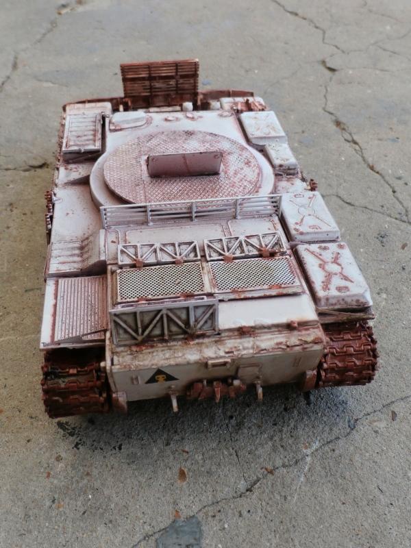 T-55BZ 1/35 Skif (FINI) - Page 2 P7300013