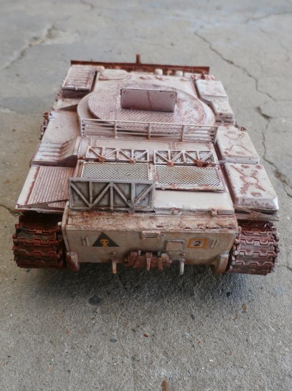T-55BZ 1/35 Skif (FINI) - Page 2 P7310011