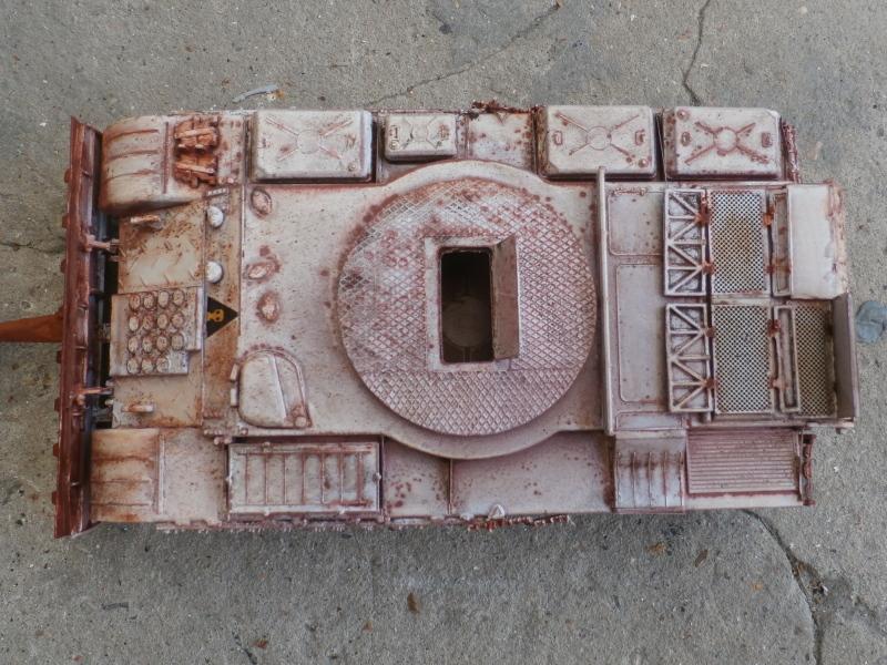T-55BZ 1/35 Skif (FINI) - Page 2 P7310012