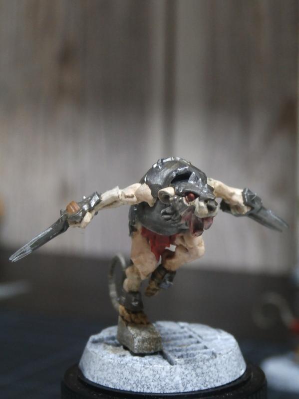 Spiteclaw's Swarm - figurines Wahrhammer (FINI) Pa210011