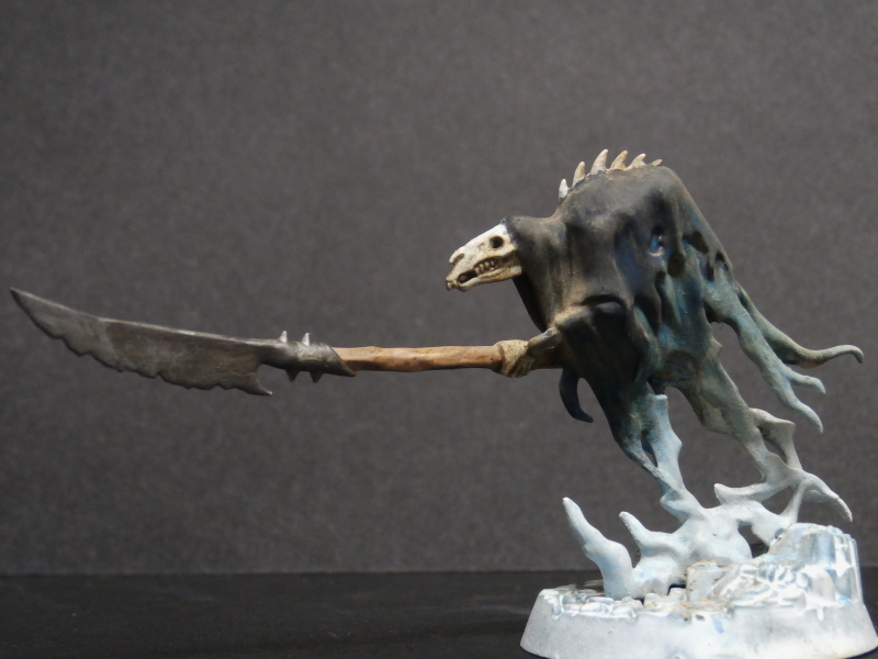 Glaive wraith Stalkers - Figurines Warhammer (FINI) Pa310018