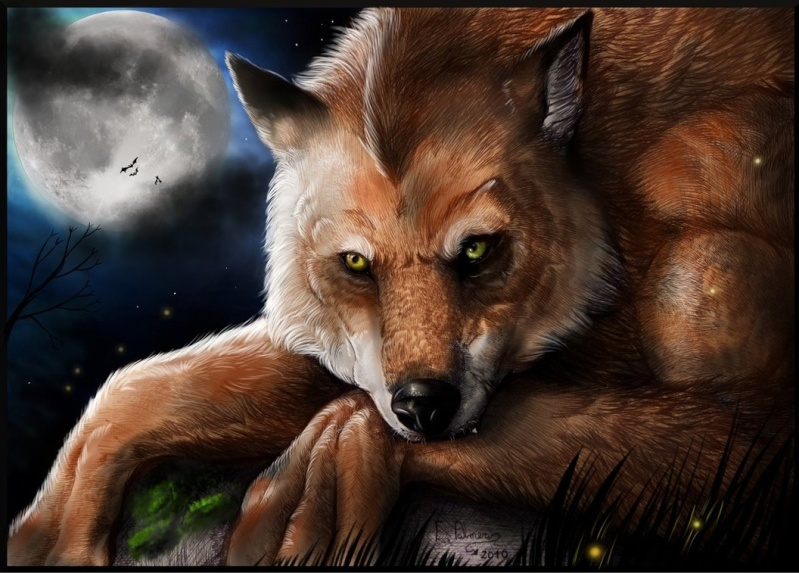 <---Raith Sher Lionheart 'Dealer of Poverty'---> Silenc10
