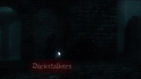 The Darkstalkers/ The Fallen  Darkwo10