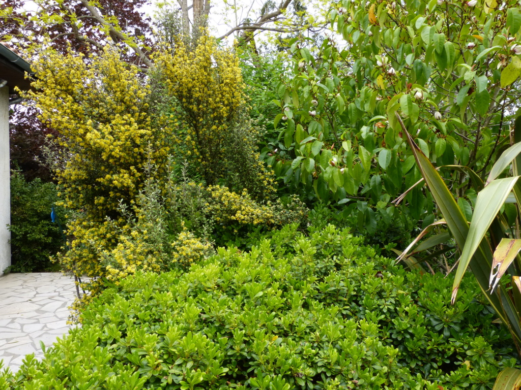 Brassées fleuries - Page 2 Coroki10