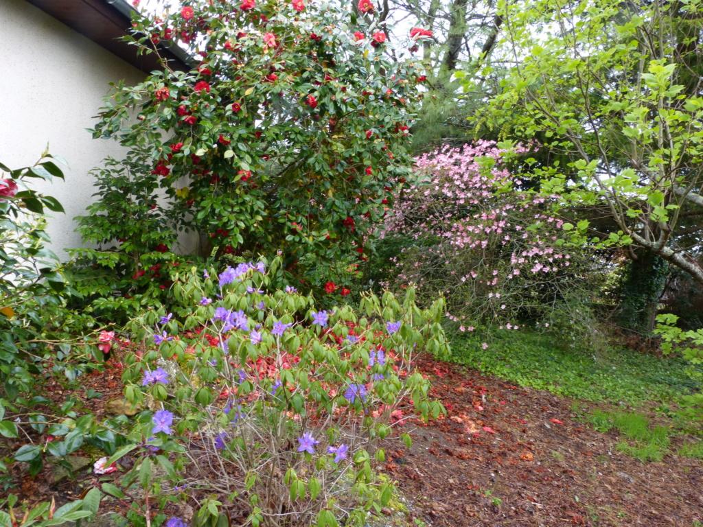 Brassées fleuries - Page 2 Florai12
