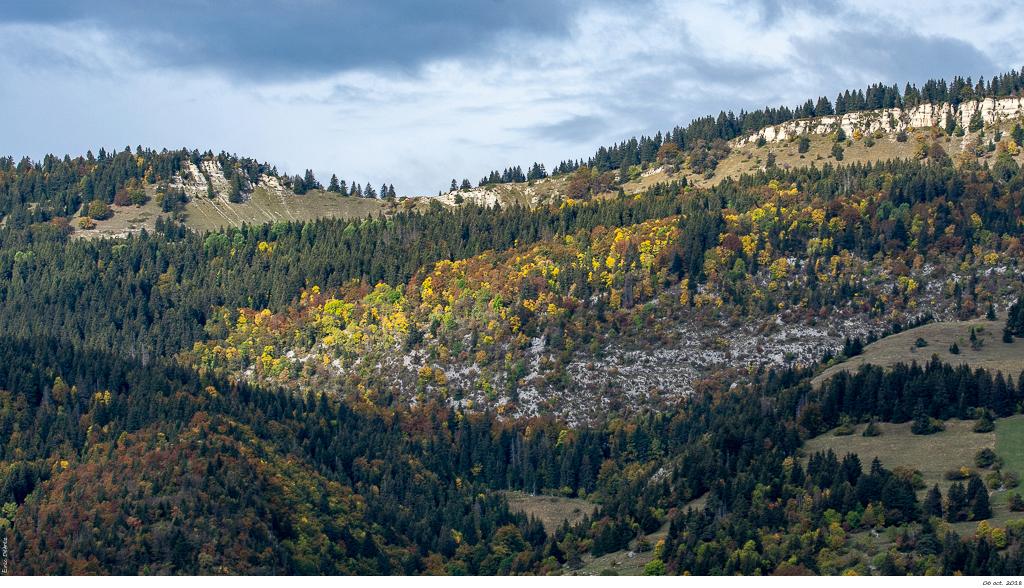 Vers Saint-Nizier l'automne s'installe _dsc2111