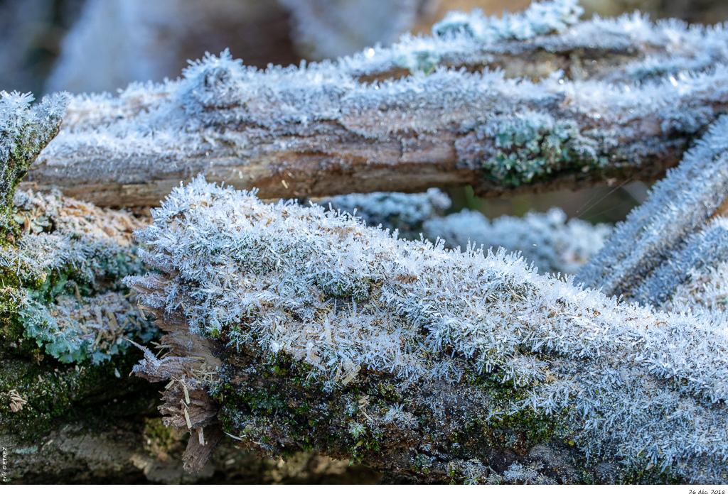 L'hiver est bien présent en Ardèche Dsc_2813