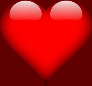 TIMIDUTZA -Taille Moyenne- NEE LE 15/09/2006 EN FA DANS LE 49 - Gage-cœur Muriel S. + Nathalie R.M - 30MA-R - Page 7 Heart-11