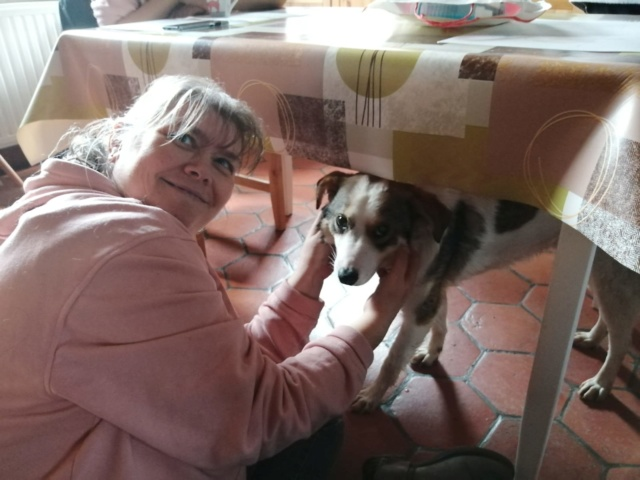 NUGGETS -  né 15/04/2018 (chiot de Wally) - marrainé par Patricia  en FA chez Nancy en Belgique -R-SOS - Page 2 Img-2099