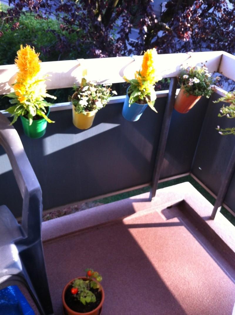 Voici mon balcon 2012-013