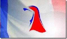 Doit-on tolérer le PMF, un parti islamiste en France ? Drapea10