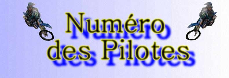 Numero Des Pilotes