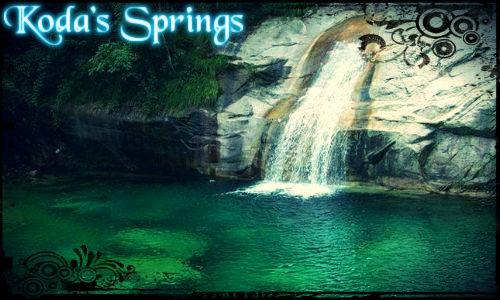 Koda's Springs Koda_s10