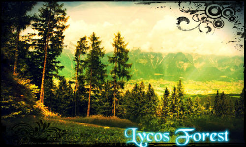 Lycos Forest Lycos_10