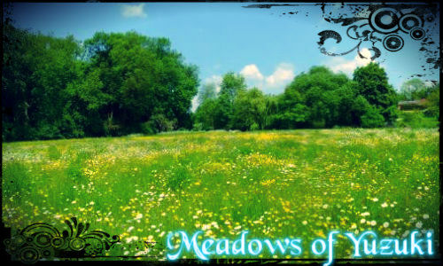 Free forum : Forest Of The Lycos - Portal Meadow10