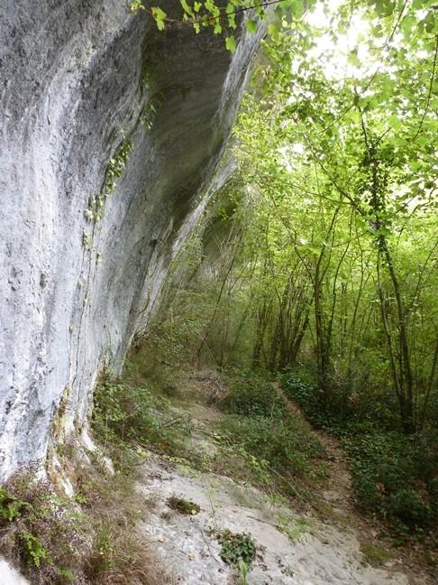Promenade  Périgourdine avec Serge - Page 3 P1030355