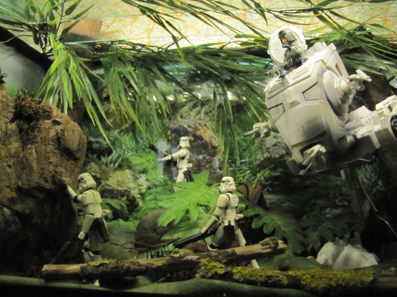 Diorama bataille d'Endor - Page 4 Img_1514