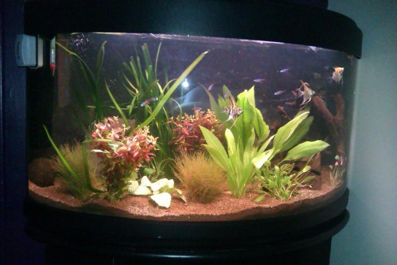 mon aqua vision  Imag0023