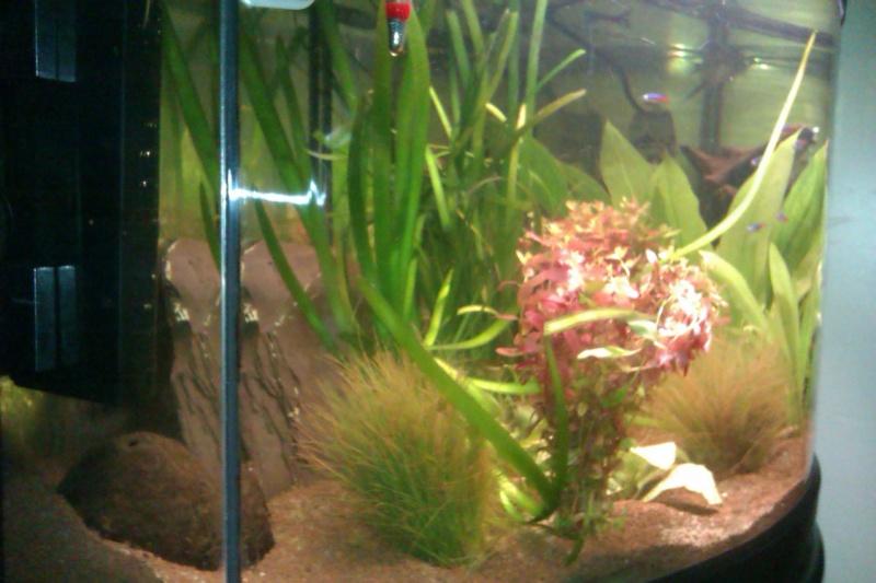 mon aqua vision  Imag0024