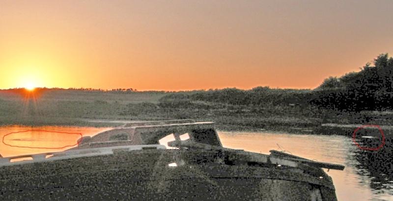 2009: Juillet - Photo troublante - golfe du Morbihan (56) - Page 4 Captur12