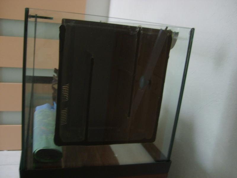 enfin mon aquarium S6001311