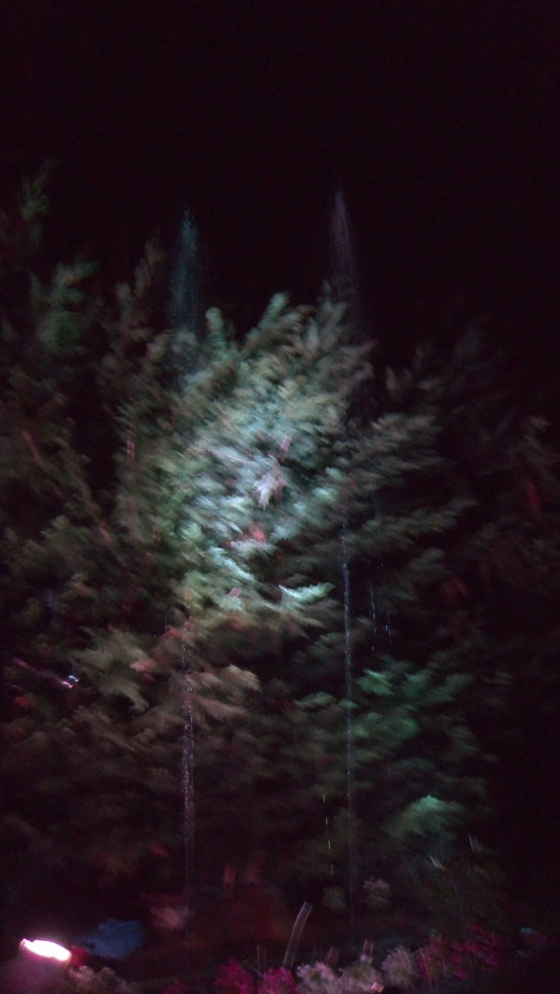 Spectacles nocturnes - Créations 100_0012