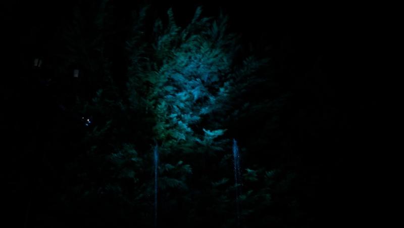 Spectacles nocturnes - Créations 100_0013