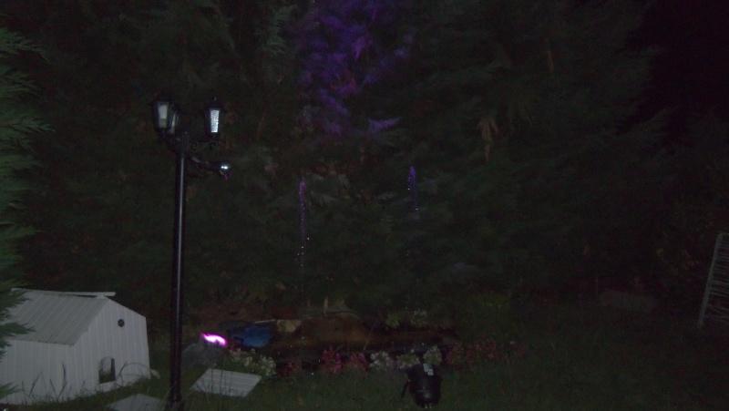 Spectacles nocturnes - Créations 100_0014