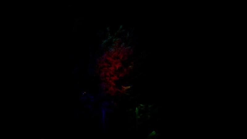Spectacles nocturnes - Créations 100_0015