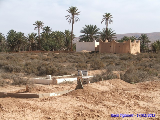 [Maroc Camp/Découverte] Camping Aaïn Nakhla à Tighmert 090210
